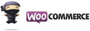 Преимущества и недостатки плагина интернет-магазина Woocommerce